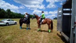 'Get your cowboy on' at second annual equine poker run