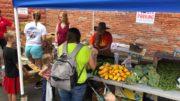 Final week of Kids' Market in Owego