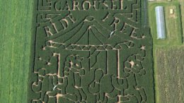 Stoughton Farm's corn maze celebrates Broome County Carousels