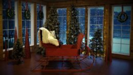 Holiday time at Pumpelly Estate