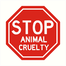 Barton residents charged with animal cruelty