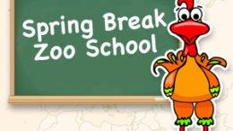 Spring Break Zoo School at the Binghamton Zoo
