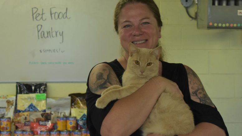 New Stray Haven Director hopes to improve animal welfare