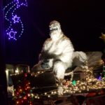 Guests line the street for Candor's annual Holiday Parade