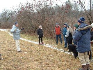Wetlands and Woodland Hike at Greenway