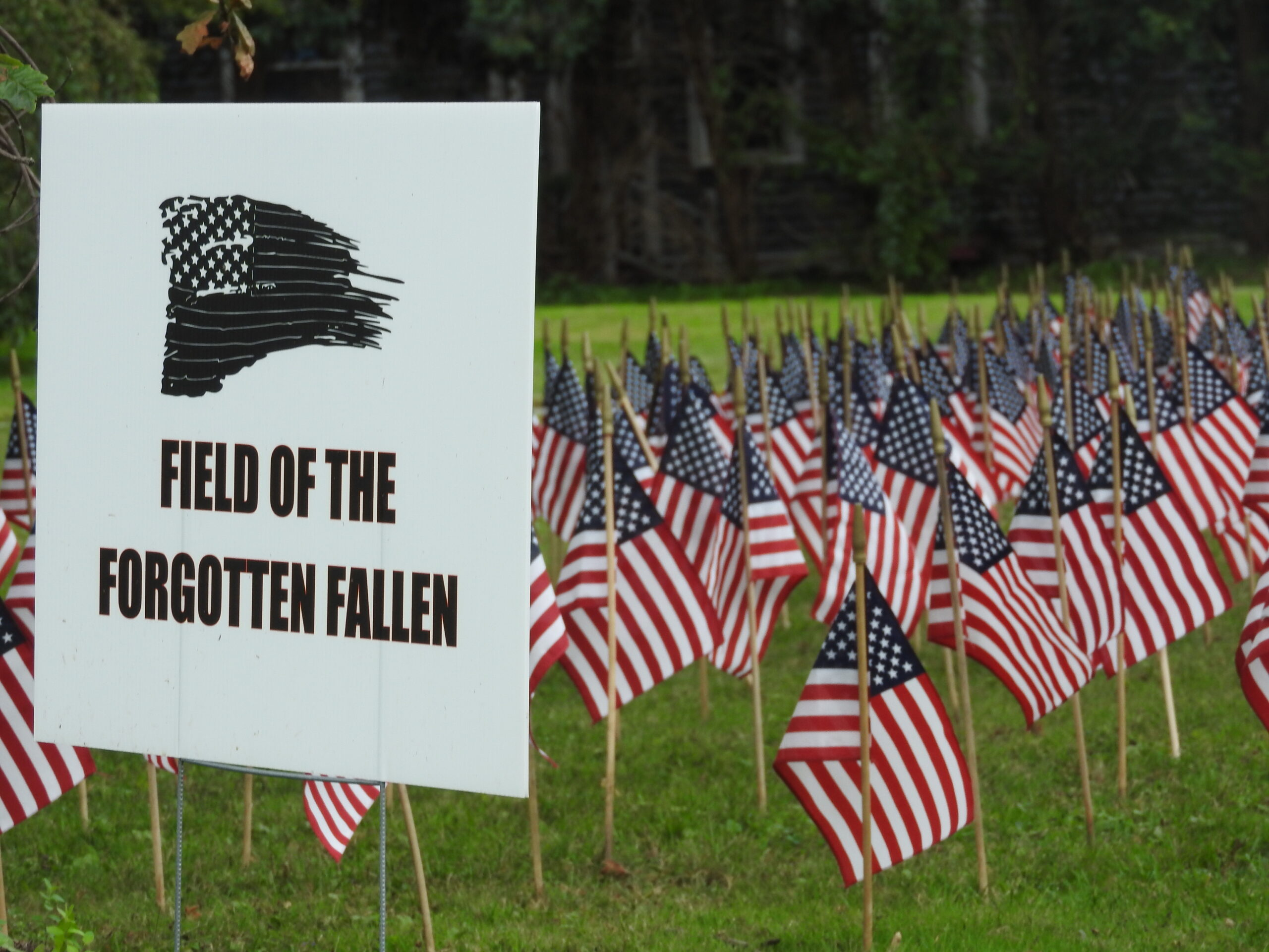 Tioga County pays homage through 'Field of Forgotten Fallen' display