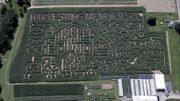 Stoughton's famous corn maze to open for 16th season